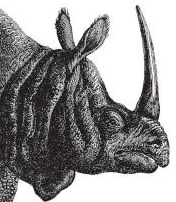 Javascript | The Definitive Guide - Javan Rhino head