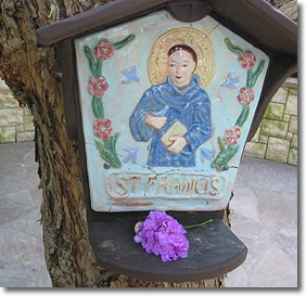 St. Francis at Meditation Gardens in Encinitas